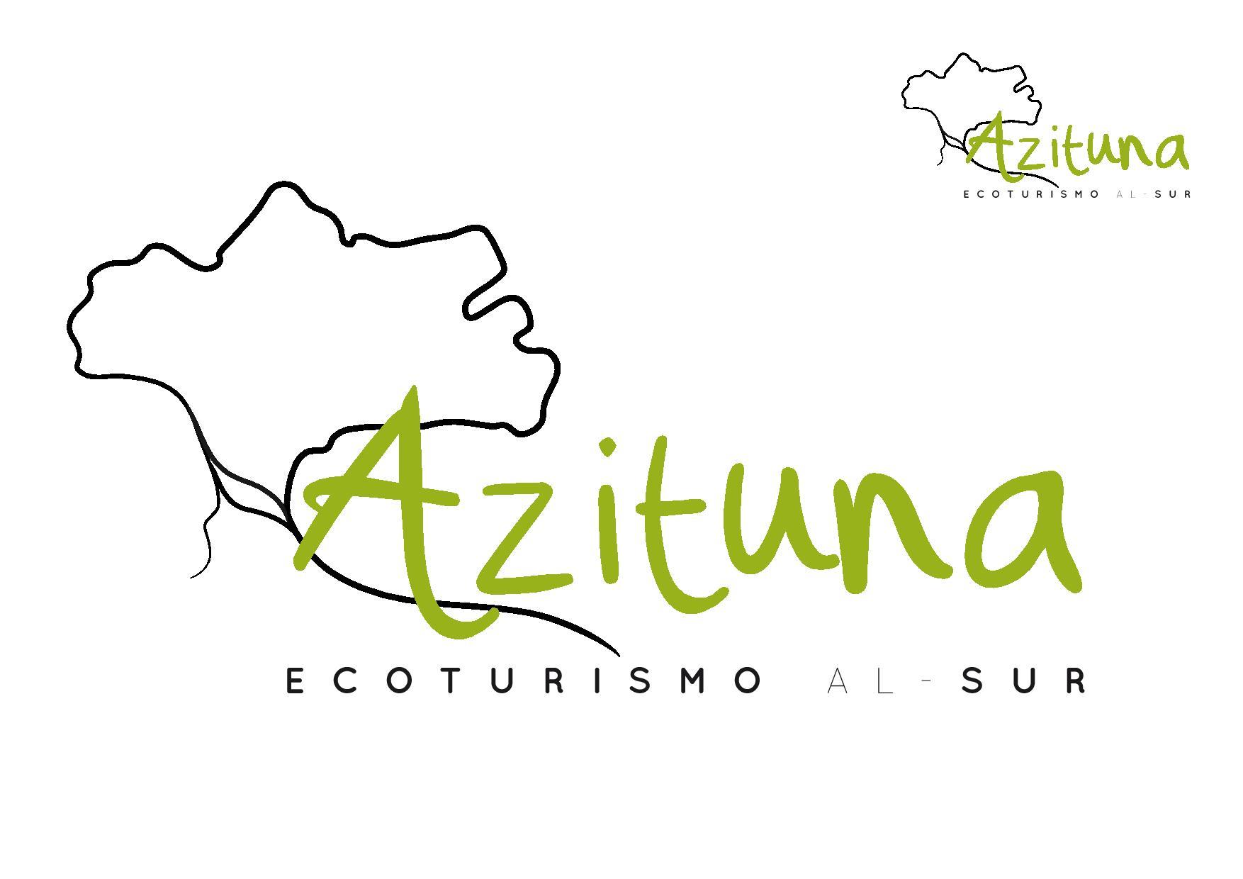 Azituna, branding + web. Por UyM