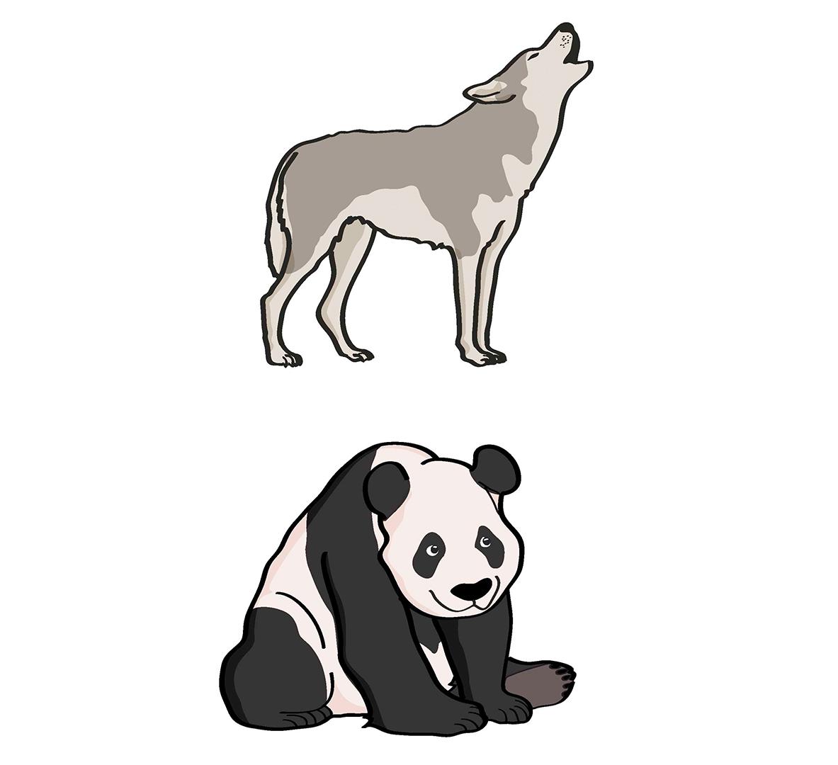 Ilustración de UyM para Aroideas
